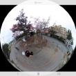360°すべてを撮影できるカメラ RICOHシーターを買いましたぁ~