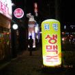 """한국 명물(韓国名物)?の存在感抜群のエアー看板です   """"バルーン・サイン""""とも呼ばれているようです"""