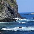 小さな浜辺を探し、偶然素晴らしく美しい貝殻の博物館を発見!