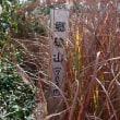 総検行山~郷鴫山
