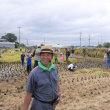 筑波農場の稲刈り体験2017を開催しました。