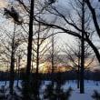 太陽を崇める2月の景色。