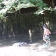 川遊びと・・・またはいりが・・・