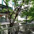 お茶会@新宿・「家の話をしましょう」