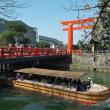平安神宮界隈の桜 岡崎の桜そして哲学の道へ