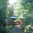 花火大会と弥彦神社
