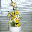 花粉症ですが、花を飾るのは好き
