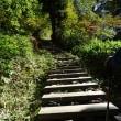 秋の車旅に出かけました!(9)鳩待峠に戻って来ました・・・そして・・・