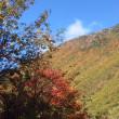 久々の秋晴れ! 中尾高原