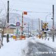 凍り付いた道路