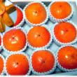 秋から冬にかけての味覚到来(^^♪美味しい美味しい和歌山県橋本産の農園自慢の「富有柿」