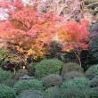 京都の紅葉を見に行ってきました②