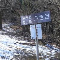 藤原岳8合目