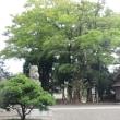 本屋親父のつぶやき 9月18日 台風18号も無事通過しました。
