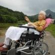 新しい車椅子でご機嫌な散歩