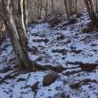 御坂・黒岳で冬富士を楽しむ