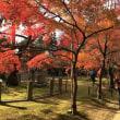 京都をぶらり