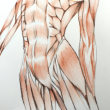 Nude-Muse-angel-Tableau-ヌード-芸術-アート-絵画:飛翔