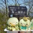 秀麗富岳12景  難所は名所    ~2018.4.29(日)笹子雁ヶ腹摺山・笹子峠 (未完成)