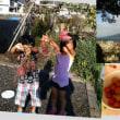 大好き…鹿児島