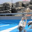 大分マリンパレスうみたまご&高崎山自然動物園へ  kasuga