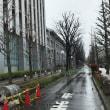 昨日の雨は