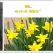 春うらら....