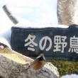 今一つの野鳥たち「野鳥のレストラン」。