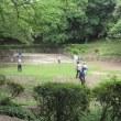 市川の里見公園