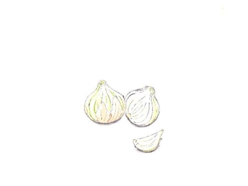 新玉ねぎのピクルス。