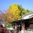 近隣の様子を伝える木戸忠朝 ―羽生城コトノハ―