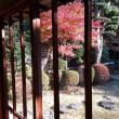 大磯城山公園、茶室と旧吉田茂邸