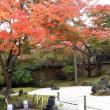 松島、円通院 11604