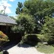 トッポパパの日本気まぐれ紹介、  その208 『川越・小京都』 その4