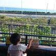 梨を買いに伊良湖へ!