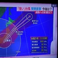 巨大台風21号