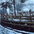 自宅研修   H30-01-11 ㈭ 小雪