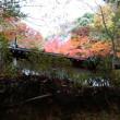 モミジ訪ねて南河内を走る 紅葉チャリツアー2017年 その1  11月22日
