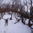 雪を踏みに比良山へ