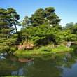 兼六園の新緑と金沢城公園の植物