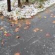 雨から霙そして初雪の月曜日は、