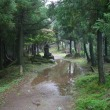 台風一過,英彦山へ