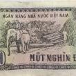 ベトナム穀倉地帯