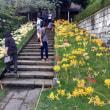 大田区民プラザの書展と彼岸花咲く西方寺へ。