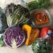 野菜料理いろいろ