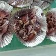 日曜はレアな刺身に出会えるかも♪種類豊富にスタンバイ!かねしげの「刺身バイキング」!!刺身と手作り干物の専門店「発寒かねしげ鮮魚店」。