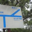 壱岐島オルレ 第3弾♪~八幡半島コース №1 ~2日目③