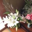 花。はな。ハナ。