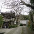 鎌倉を知る ーー 薬王寺 ーー