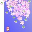 高知では桜が開花したそうですが